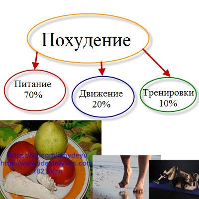 Как питаться, чтобы похудеть фото